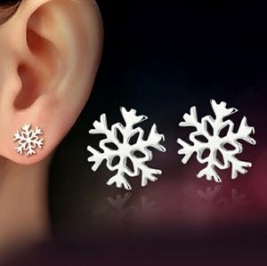 Jewelry - Snowflake earrings silver